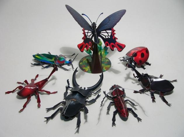 昆蟲組 1